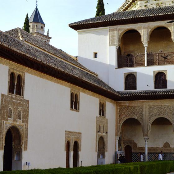 Alhambra Courtyard with Swifts in flight
