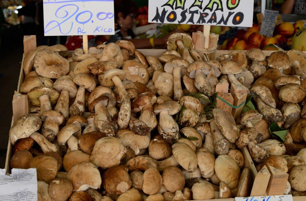 Modena Mercato fresh ceps