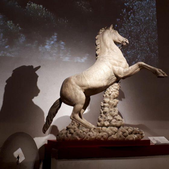 History of the Horse exhibition in the Lemon House, Boboli Gardens