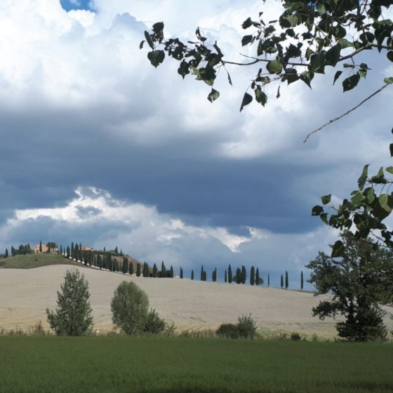 Tuscan landscape and cypress trees