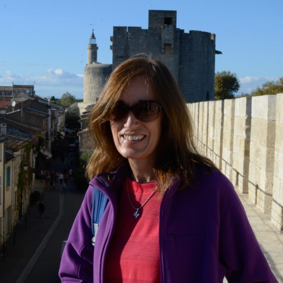 Aigues-Mortes - Ramparts with Tour de Constance in background