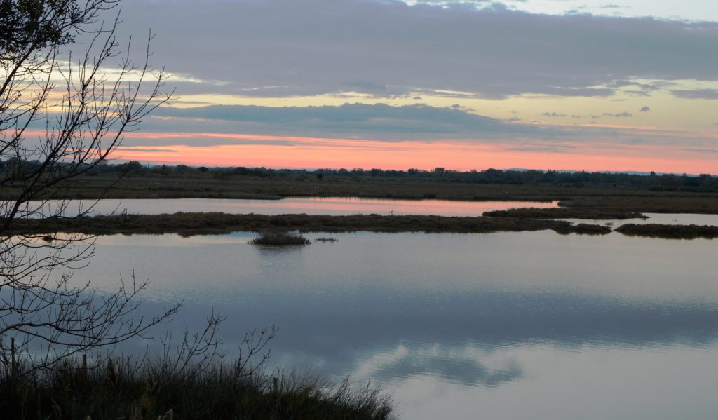 Camargue - sunset over the lagoons
