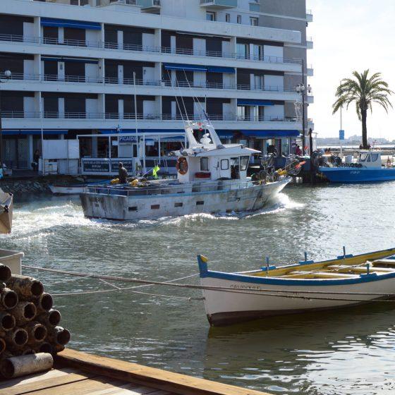 Camargue - Grau du Roi Fishing Boat heads out to sea