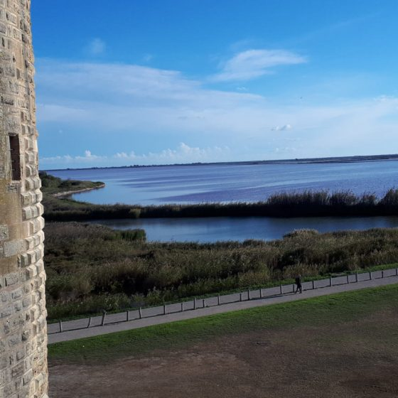 Lagoons next to the walls of Aigues-Mortes