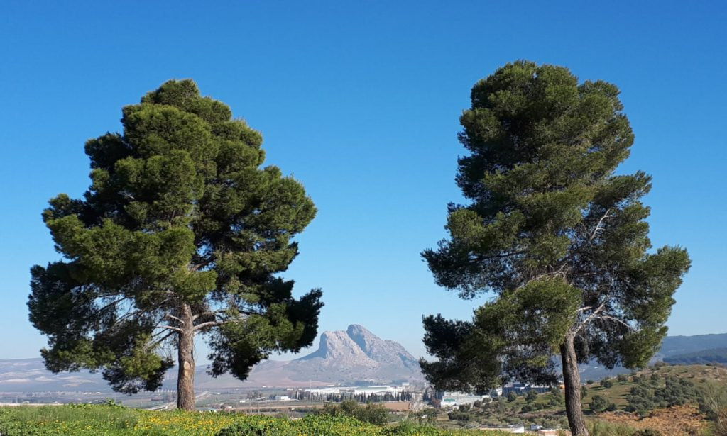 Lovers Leap Antequera