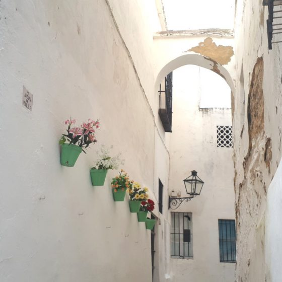 Flowers brightening up the whitewashed town of Arcos de la Frontera