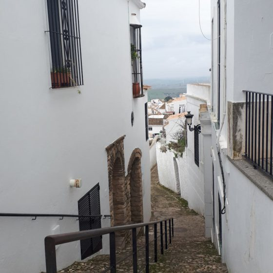 Typical pueblos blancos steep, narrow, cobbled and slippery street!