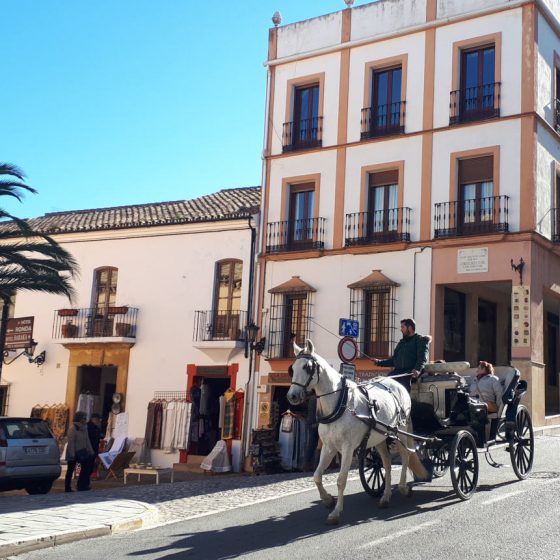 A horse coming from the old part of Ronda going towards the bridge