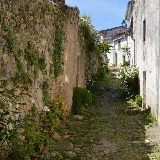 Castelo de Vide - Medieval burg alley