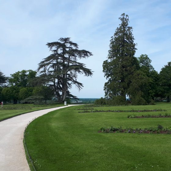 The parkland grounds of Chateau Chaumont