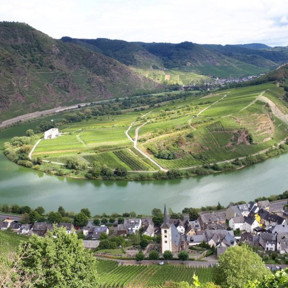 The beautiful curving Mosel
