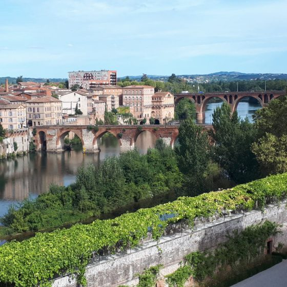 The beautiful setting of Albi and the Tarn river