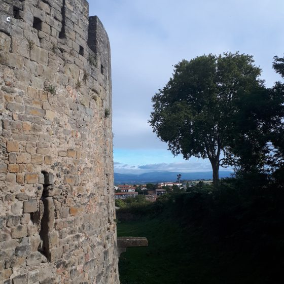 Carcassonne tower walls and view