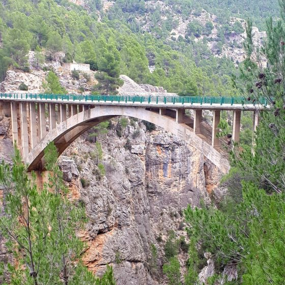 Bridge over the road at the Turia gorge