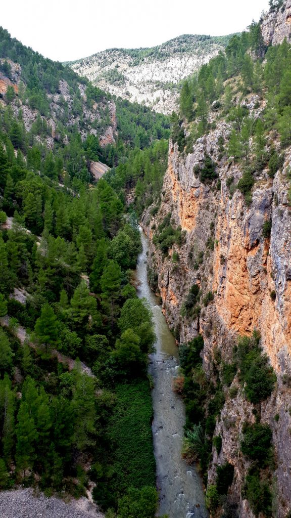 An unexpected discovery - the Turia canyon